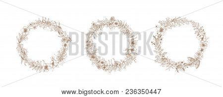 Bundle Of Vintage Wreaths Or Decorative Round Floral Frames Made Of Blooming Flowers Hand Drawn With