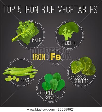 Top Five Iron Rich Vegetables - Kale, Broccoli, Brussels Sprouts, Peas And Cooked Spinach. Vector Il