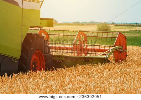 Combine Harvester Machine Harvesting Ripe Wheat Crops In Cultivated Agricultural Field, Selective Fo