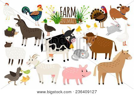 Farm Animals. Domestic Farm Animal Collection Isolated On White Background, Goose And Donkey, Pig An