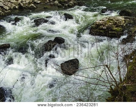 River Doubs With Mossy Trees Near Saut Du Doubs Waterfall Switzerland