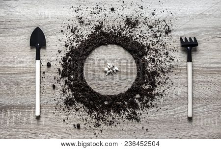 Wooden Background Concept Ground Piled Circle Dish Spoon Fork Fork Rake Texture Planting Center Seed