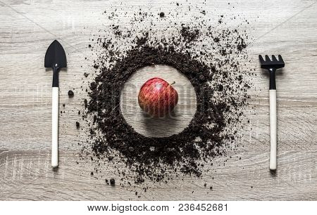 Wooden Background Concept Earth Piled Circle Dish Spoon Fork Fork Rake Texture Planting Center Apple