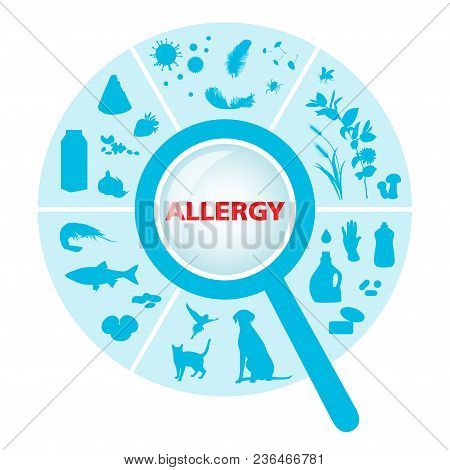 Sector With Allergens Under A Magnifier On A White Background