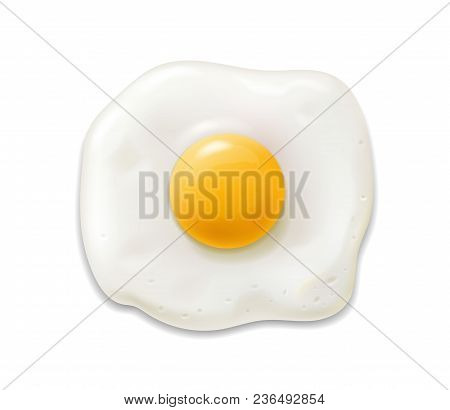 Fried Egg Isolated Realistic 3d Icon. Scrambled Egg Illustration Vector.
