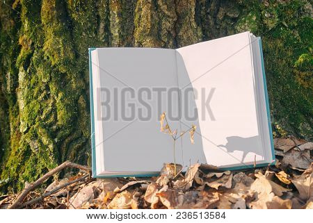 Open Clean Empty Book In Blue Bound Lying On A Dry Leaves. Background Texture Bark Tree In Spring Na