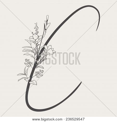 Vector Hand Drawn Flowered C Monogram Or Logo. Uppercase Letter C With Flowers And Branches. Handwri