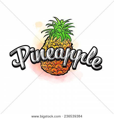 Pineapple Colorful Label Sign. Vector Drawing For Advertising. Fresh Design Of Colorful Fruits Made