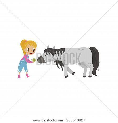 Cute Litlle Girl Feeding Horse With Green Grass, Equestrian Sport Concept Cartoon Vector Illustratio