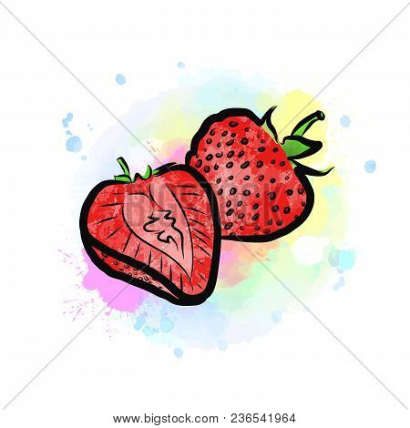 Colored Drawing Of Strawberries. Fresh Design Of Colorful Fruits Made In Watercolor Style. Modern Ma