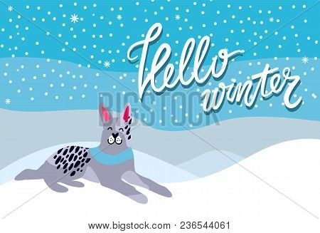Hello Winter Poster With Spotted Grey Dog With Blue Collar, Symbol Of New Year 2018 On Background Of