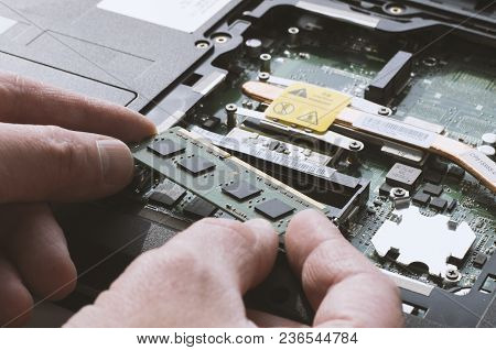 Installing Memory Modules In The Laptop With Human Hands In Natural Light Close-up
