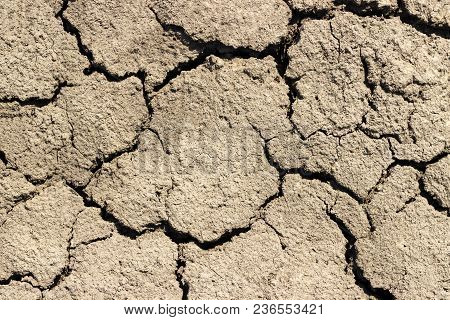Cracks In The Ground On Sunny Day.