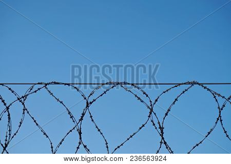 Barbed Wire Fence With Sharp Spikes Against The Blue Sky