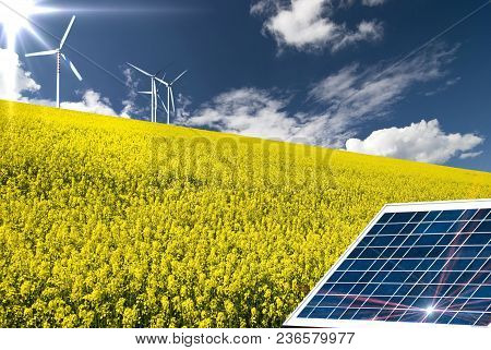 Summer Landscape With Canola Field, Solar Panel In The Foreground And Wind Turbines In The Backgroun