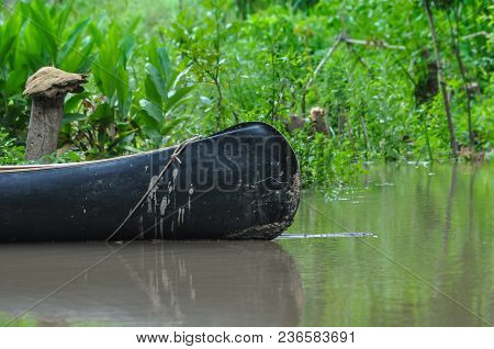 Canoe In An Argentinian River Delta With Amazing Greenery Of The River Shore