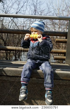 Boy Eating Corn On Bench