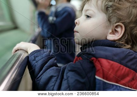 Curious Boy In Zoo