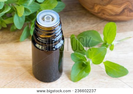 A Bottle Of Essential Oil With Fresh Marjoram Twigs In The Background