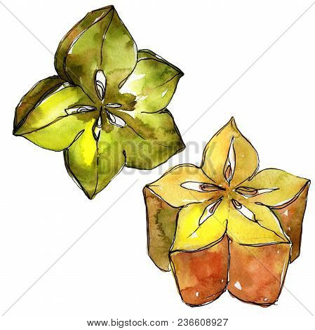 Exotic Carambola Healthy Food In A Watercolor Style Isolated. Full Name Of The Fruit: Carambola. Aqu