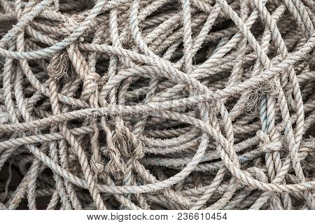 Gray Sea Ropes Lie In A Heap In Fishing Port Of Busan