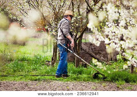 man cutting grass in garden with the weed trimmer poster