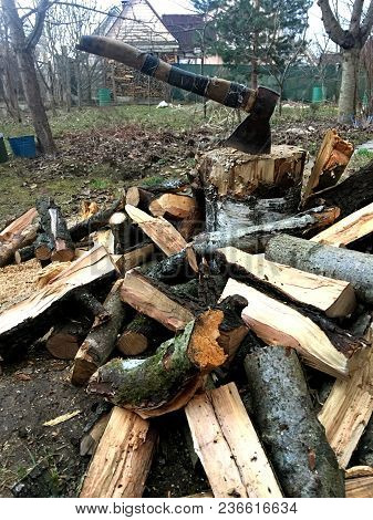 Preparation Of Firewood For The Heating Season.