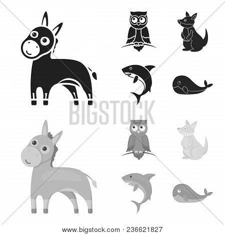 Donkey, Owl, Kangaroo, Shark.animal Set Collection Icons In Black, Monochrom Style Vector Symbol Sto