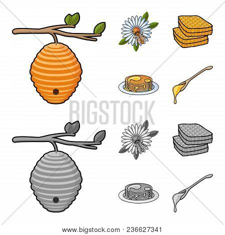 A Hive On A Branch, A Bee On A Flower, A Honeycomb With Honey, A Honey Cake.apiary Set Collection Ic