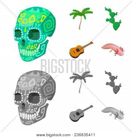 Green Skull With A Picture, A Palm Tree, A Guitar, A National Mexican Instrument, A Cactus With Spin