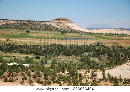 Yellow Rock Mountain And Plateau Forest In Southwest Of Usa