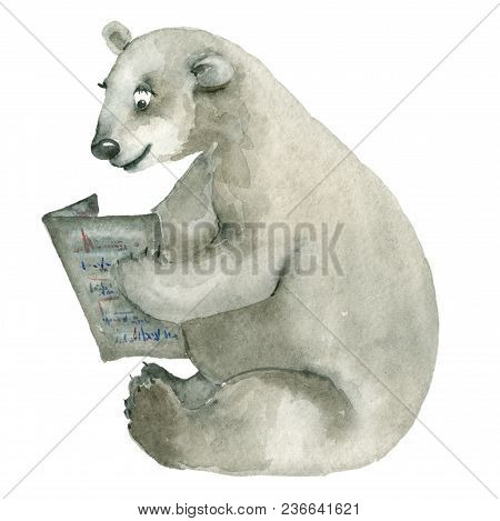 Hand Drawn Watercolor Of Polar Bear With Newspaper. White Bear Sitting And Reading Newspaper. Isolat