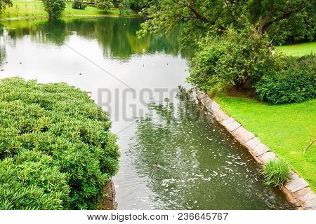 Pond, Trees And Birds In Vigeland Park In Oslo.