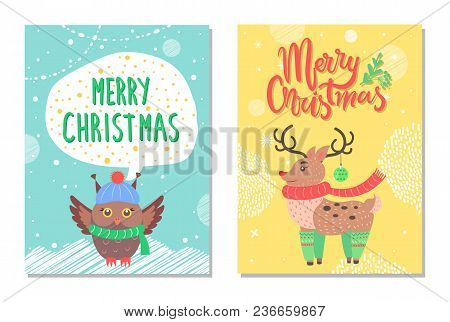 Merry Christmas Greeting Cards With Owl In Cute Warm Hat And Scarf, Reindeer In Socks With Decorativ