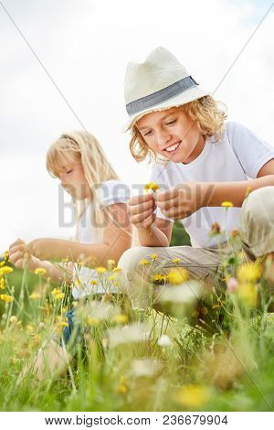 Siblings Children pick flowers together on a summer meadow