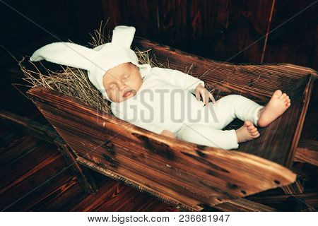 Cute newborn baby lying in a wooden trolley, dressed in rabbit costume. Easter holiday. Scenery in the rustic style.