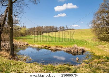 Spring Landscape With Pond, Trees, Meadows And Blue Sky With Clouds - Czech Republic, Europe