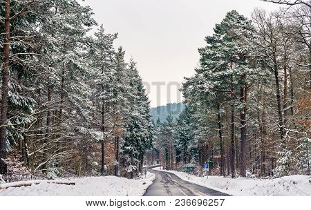 Road In The Vosges Mountains In Winter. Bas-rhin Department - Alsace, France