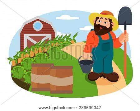 Healthy Advertising Illustration Of Agrarian In The Hat, Looking On The Harvest Of Carrot And Corn,