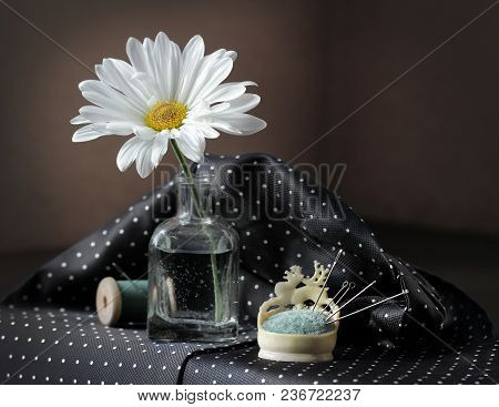 Still Life With White Daisy Flower In The Small Vintage Glass Botlle, Needles And Spool Of Thread Ag