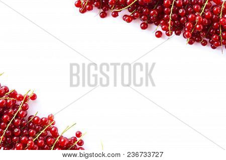 Red Currants At Border Of Image With Copy Space For Text. Ripe Red Currants On White Background. Top
