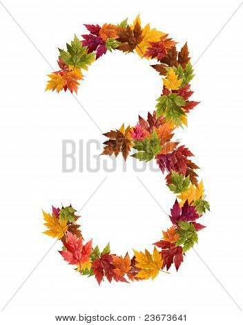 The number 3 made from autumn maple tree leaves
