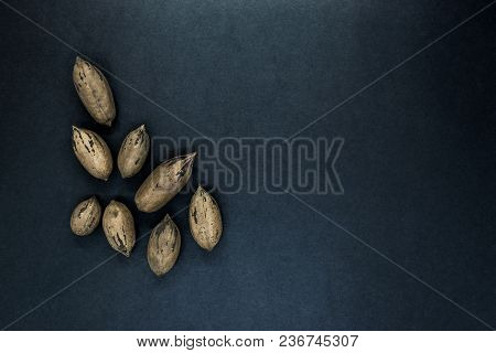 Pecan Nuts With The Nutshell On Black Background Surface With Free Space