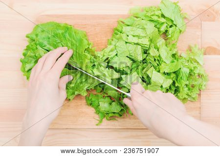 Close-up Female Hands Chopping A Green Plant Salad Cooking Salad From Vegetables On A Wooden Cutting