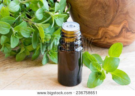 A Dark Bottle Of Essential Oil With Fresh Marjoram Twigs