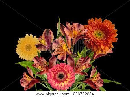 Bouquet Of Beautiful Orange Yellow Alstroemeria Flowers And Gerberas Isolated On Black Background -
