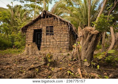 House Made With Improvised Construction In The Middle Of Native Vegetation In Brazil