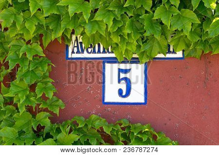 Five. Number 5. The Building Number On A Red Wall Surrounded By Plants.