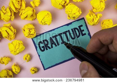 Word Writing Text Gratitude. Business Concept For Quality Of Being Thankful Appreciation Thankfulnes