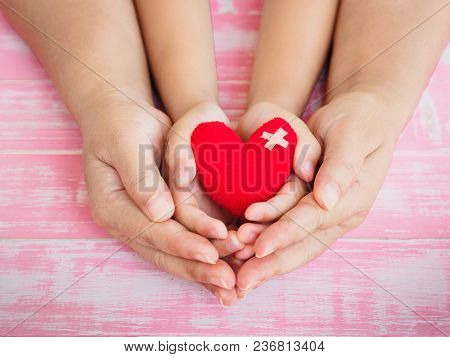 Adult And Child Hands Holding Red Heart, Health Care, Love, Organ Donation, Family Insurance And Csr